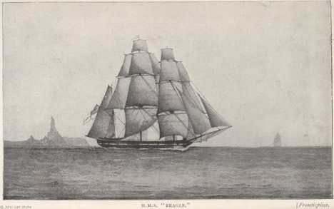 John Clements Wickham's sketch of the Beagle